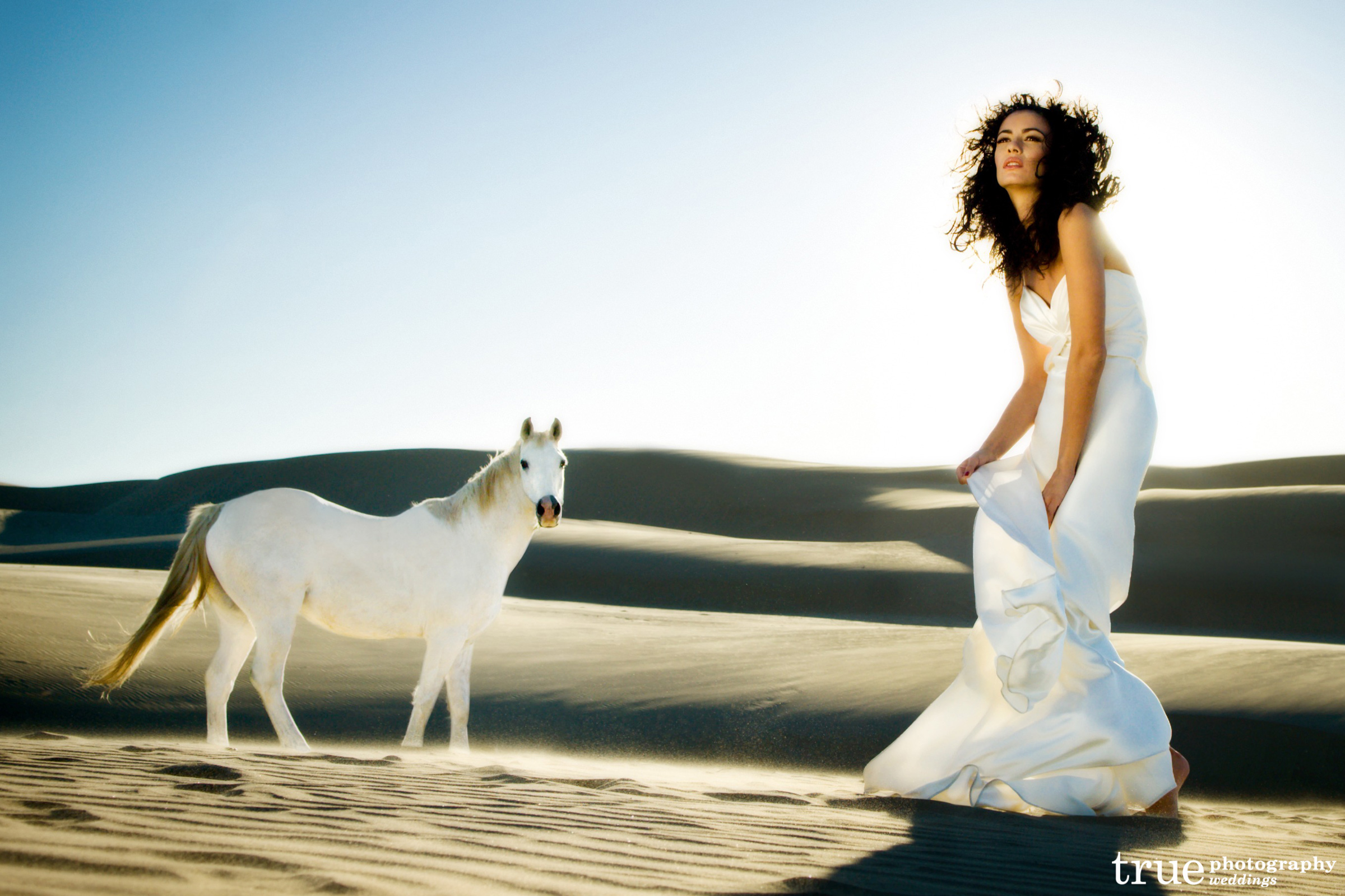 Fun-wedding-photos-bride-with-white-horse