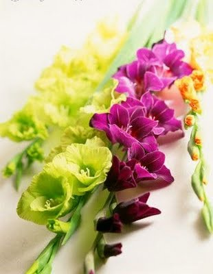 gladiolus-wedding-bouquet-3
